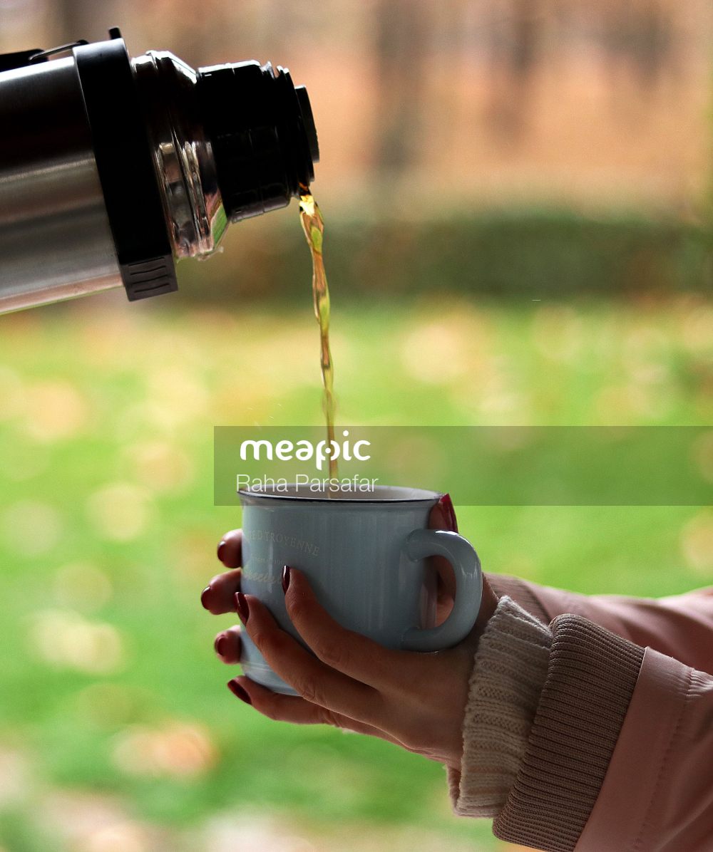 Grass, Cup, Table Stock Photo · Meapic