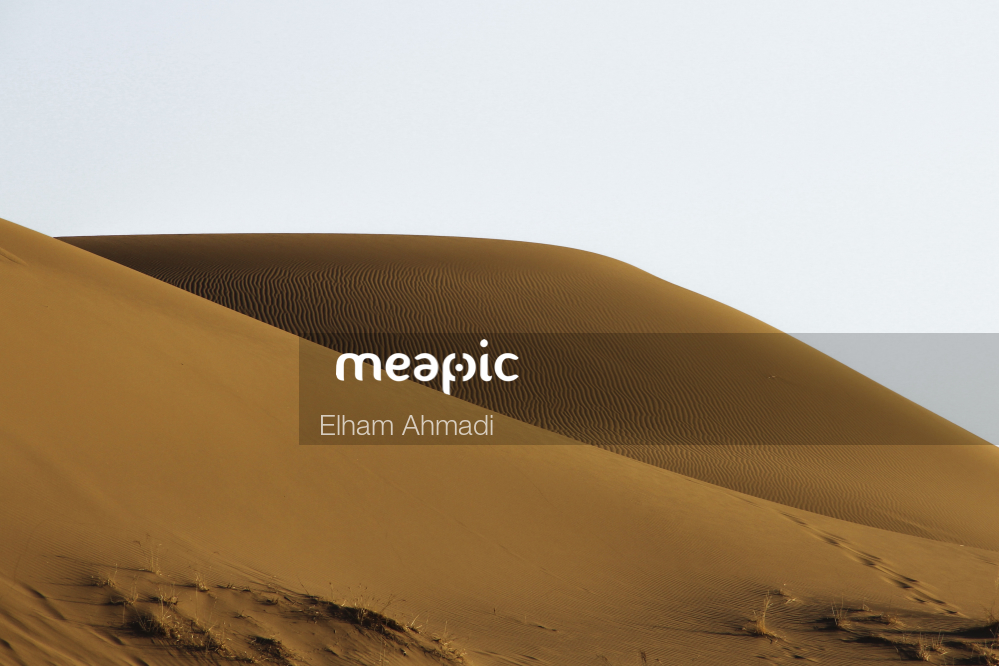 Close Up Of A Dune Stock Photo · Meapic