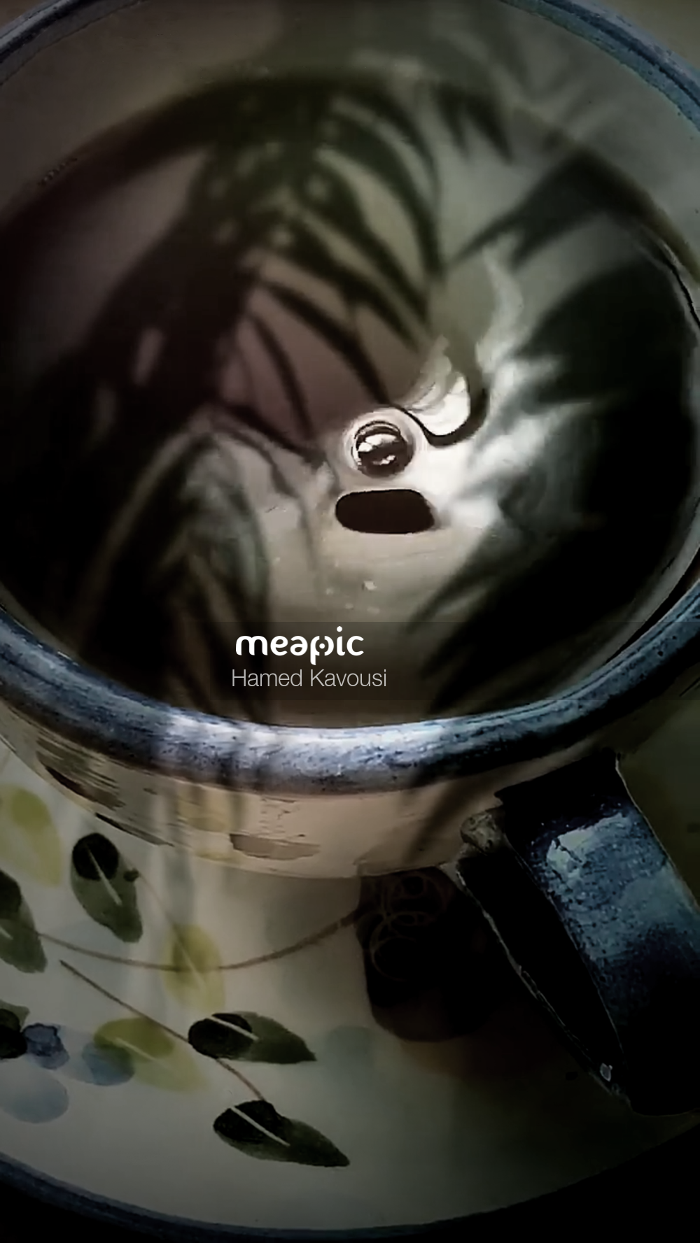 I Am Not Really Confident, But Cup Of Coffee Stock Photo · Meapic