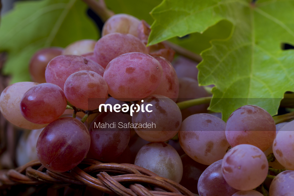 Group Of Fruit And Vegetables Stock Photo · Meapic