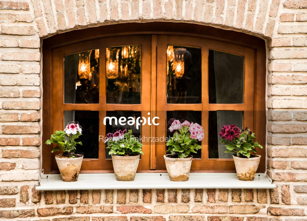 Vase Of Flowers On A Brick Building Stock Photo · Meapic