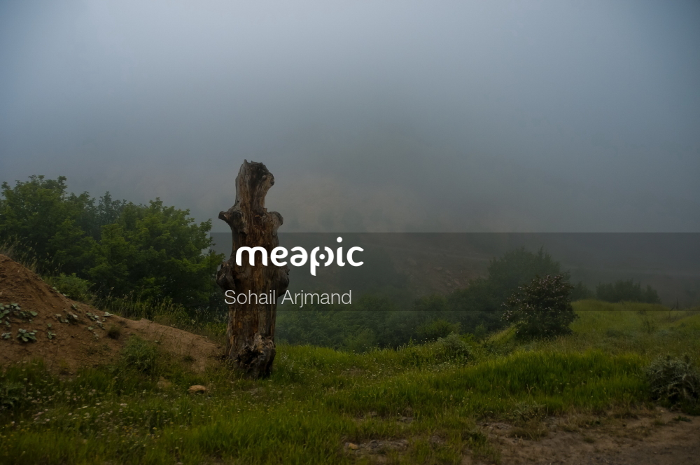 Person Standing On A Lush Green Hillside Stock Photo · Meapic