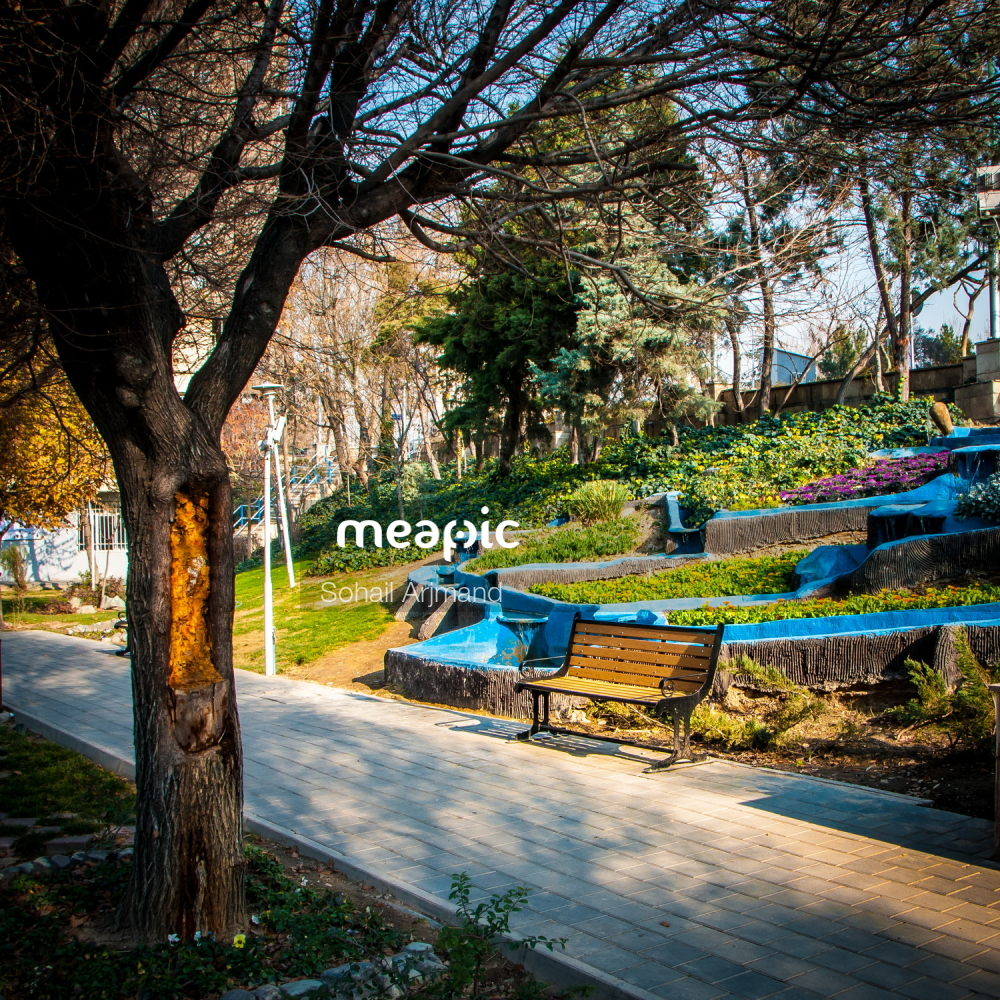 Wooden Bench In A Park Stock Photo · Meapic