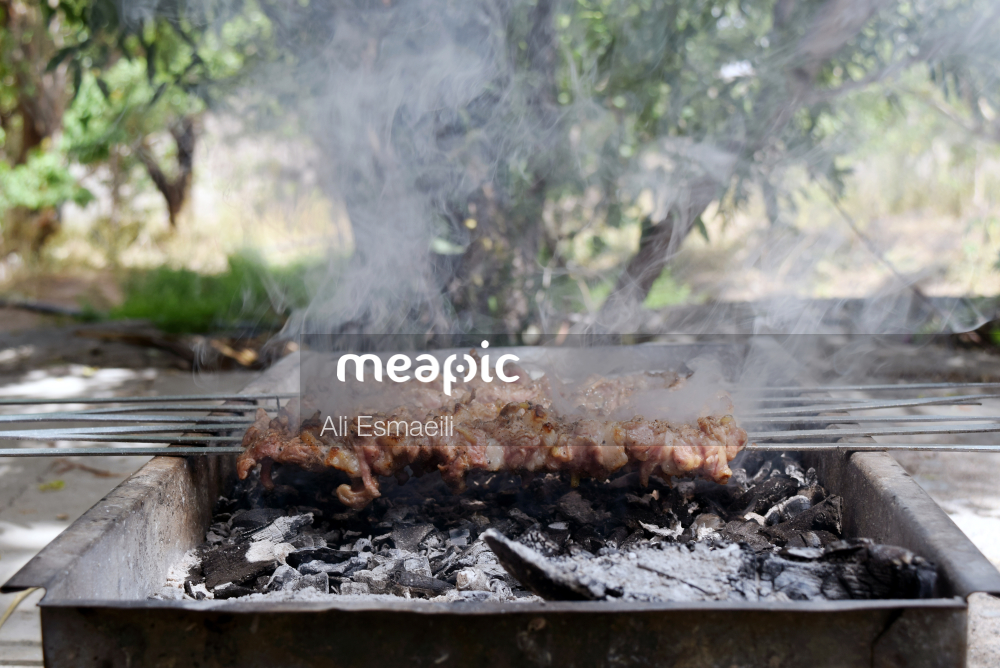 Meat On A Grill Stock Photo · Meapic