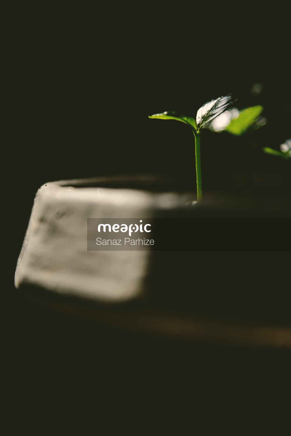Cup Of Water Stock Photo · Meapic