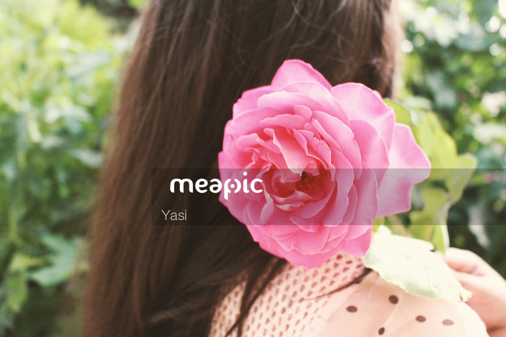 Close Up Of A Person Holding A Flower Stock Photo · Meapic