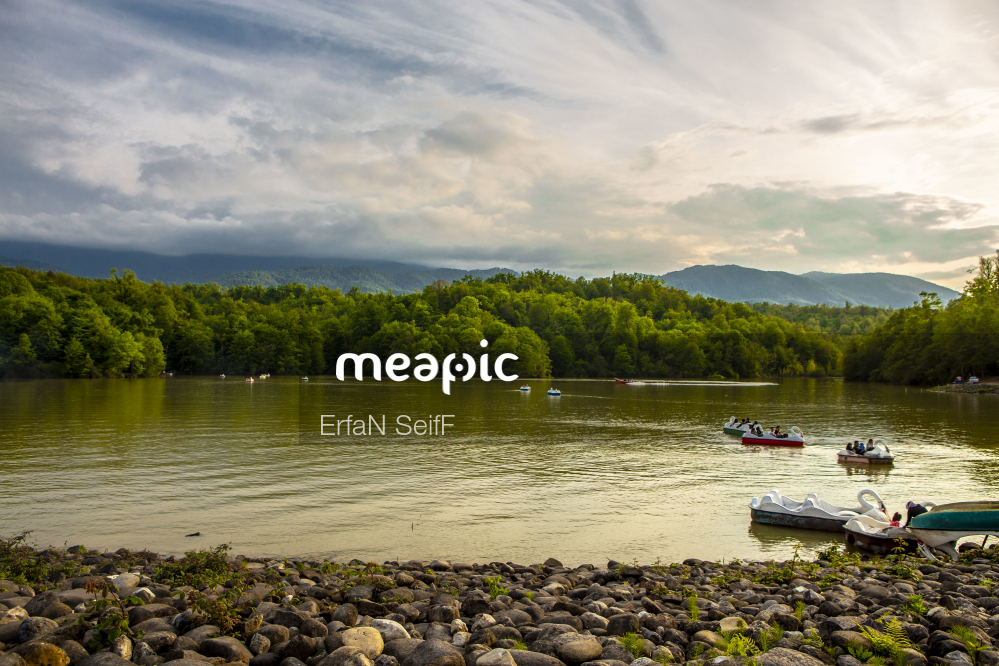 Flock Of Seagulls Standing On A Rock Next To A Body Of Water Stock Photo · Meapic