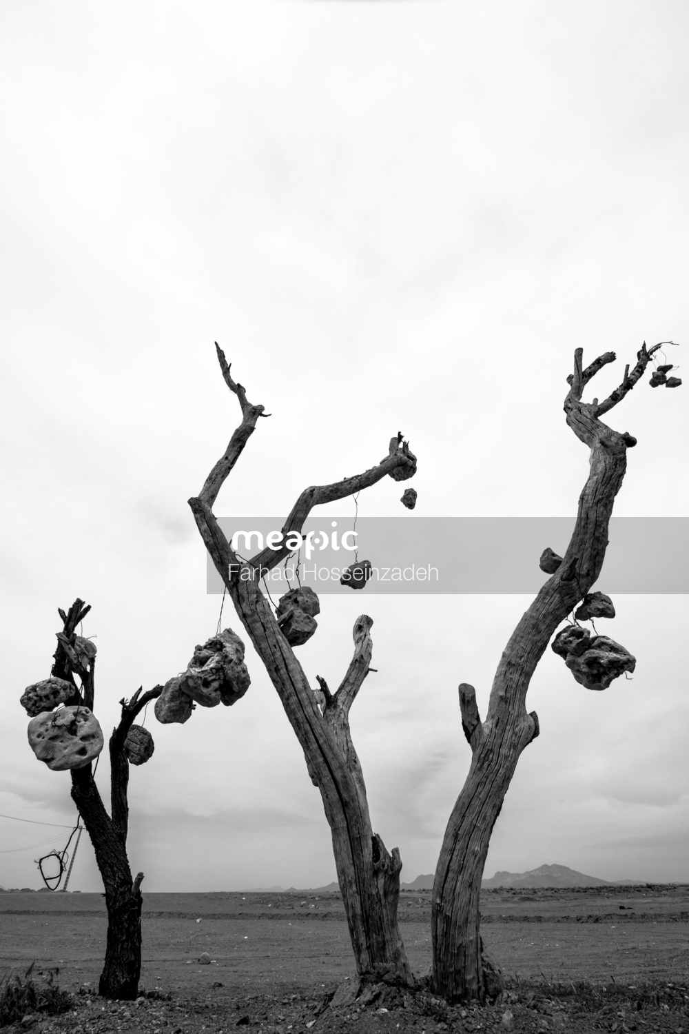 Group Of People Standing Next To A Tree Stock Photo · Meapic