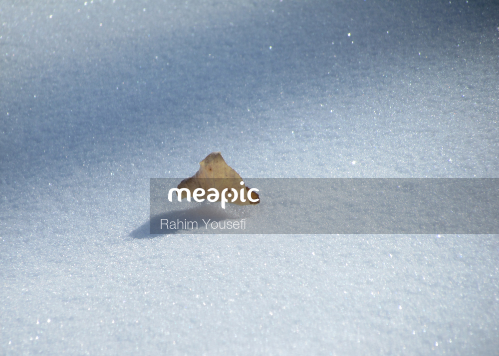 Close Up Of A Snow Covered Street Stock Photo · Meapic
