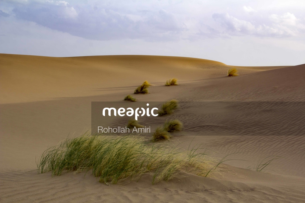 Sandy Beach Stock Photo · Meapic