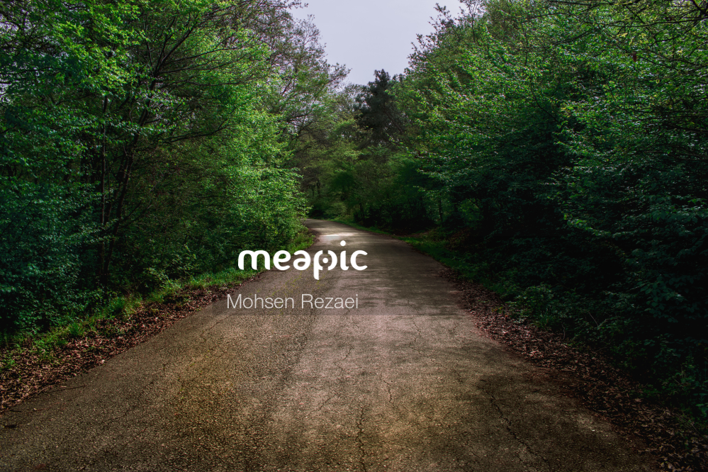 Path With Trees On The Side Of A Dirt Road Stock Photo · Meapic