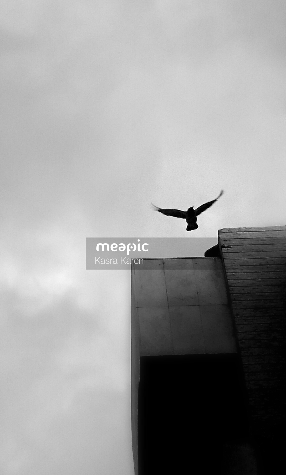 Plane Flying In The Air On A Cloudy Day Stock Photo · Meapic