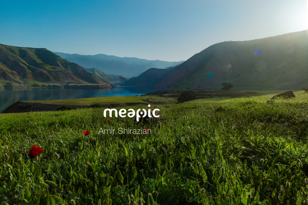 Close Up Of A Green Field With A Mountain In The Background Stock Photo · Meapic