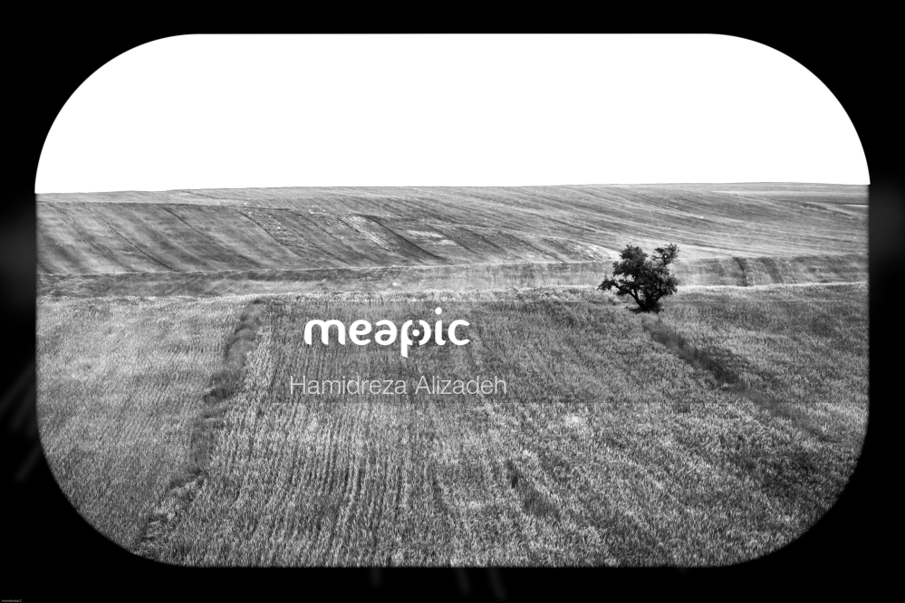 Vintage Photo Of A Field Stock Photo · Meapic