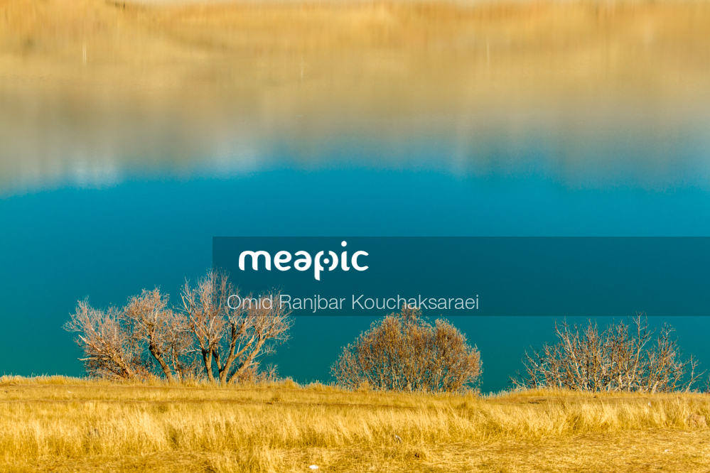 Field Of Grass Stock Photo · Meapic