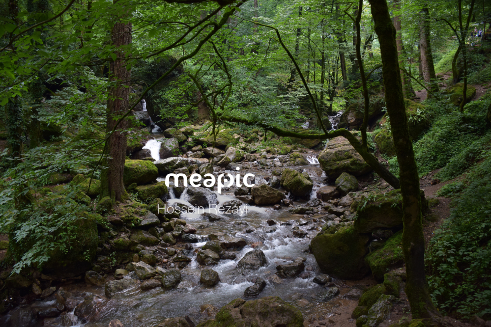 Waterfall In A Forest Stock Photo · Meapic