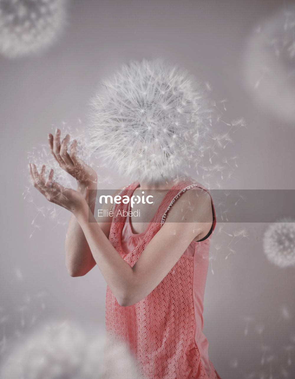 Dandelion Girl In Pink Dress Stock Photo · Meapic