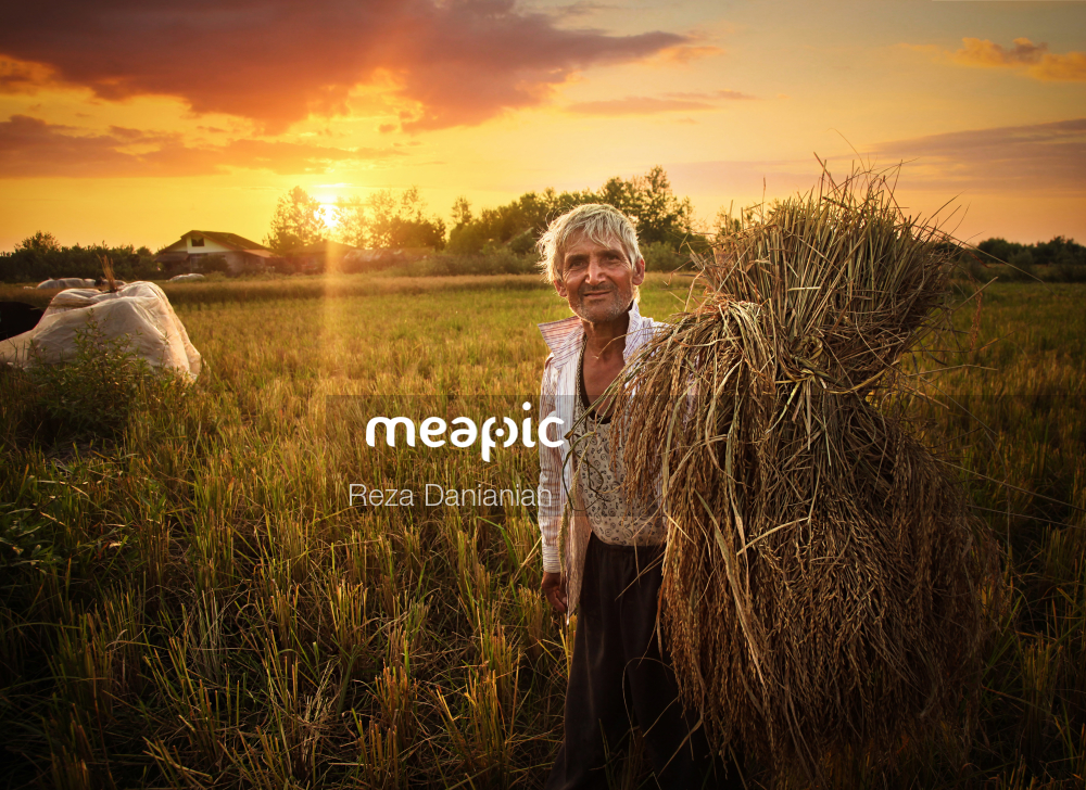 Man Standing On Top Of A Grass Covered Field Stock Photo · Meapic