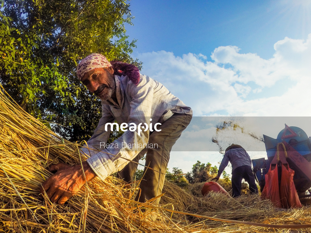 Person Standing Next To A Pile Of Hay Stock Photo · Meapic