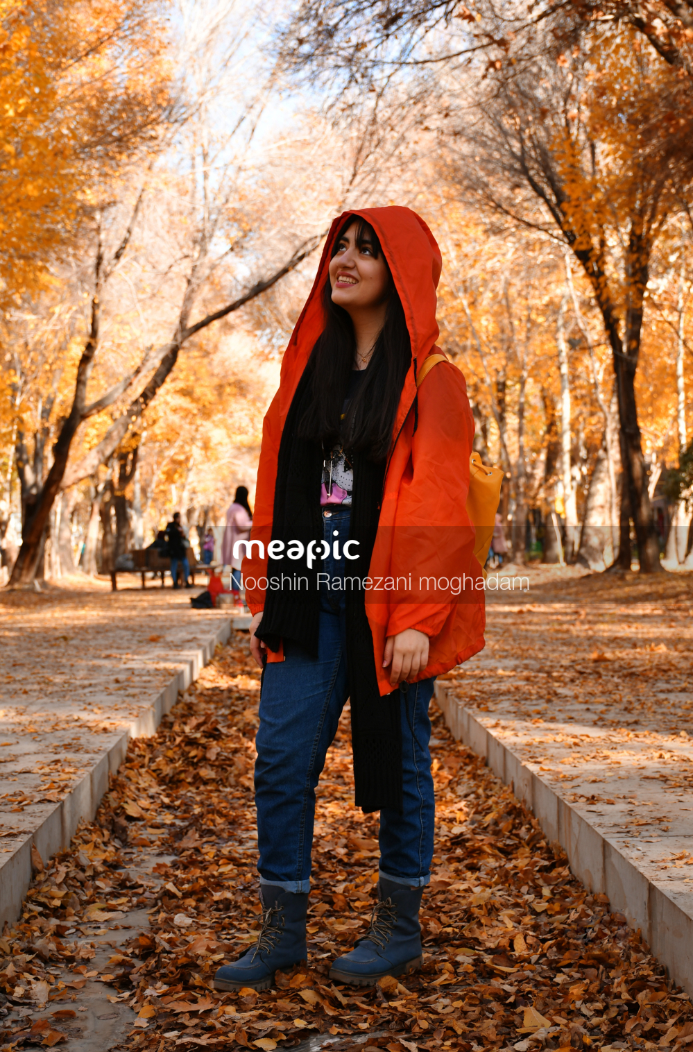 Fall Stock Photo · Meapic