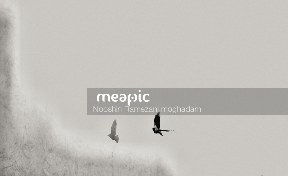 Pair Stock Photo · Meapic